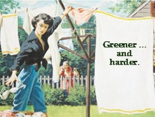 green before green was cool humorous but pointed highlights on the remarkably green lifestyle of the generation