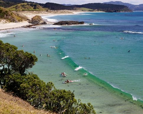 best beaches auckland, best day trips auckland, west coast beaches, best swimming awesome, best walks auckland