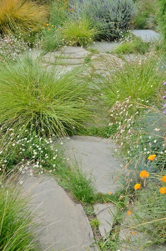 42 best images about sandy kress wild grasses on for Wild grass gardens