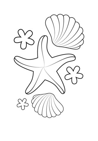 Starfish and Shells coloring page from Starfish category