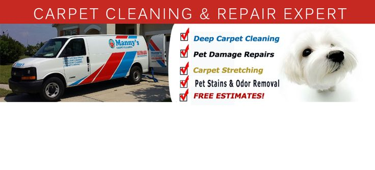 Spruce up your sofa with Upholstery Cleaning Riverview and Lithia Springs FL Those stubborn stains on your suite are a real pain aren't they? Cleaning agents. http://mannyscarpetcleaningtampa.com/upholstery-cleaning-lithia/