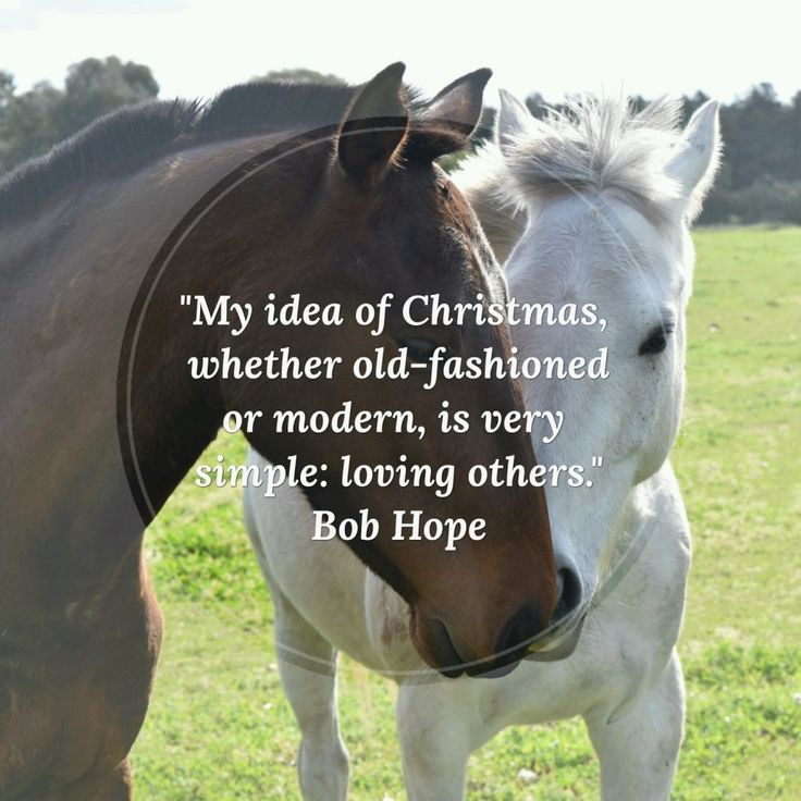 """""""My idea of Christmas, whether old-fashioned or modern, is very simple: loving others."""" - Bob Hope #love #Christmas #inspirational #motivational #inspiring #quotes"""