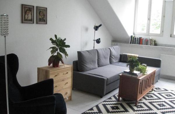 Grau Ikea Friheten Sofa Bed