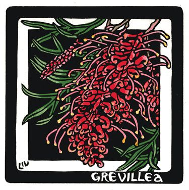 Grevillea Square - Limited Edition Handpainted Linocuts by Lynette Weir