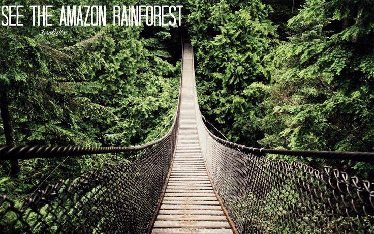 See the Amazon Rainforest