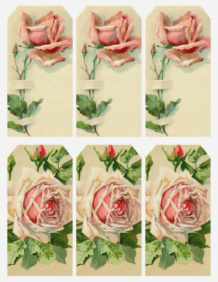 """""""Fair Perfect Rose"""" ~ printable set of 6 tags or bookmarks, featuring vintage roses & buds."""