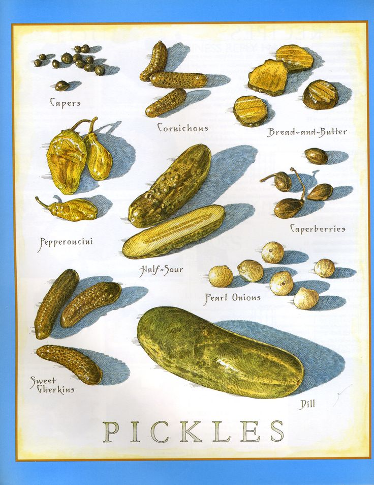 Pickles - Cook's Illustrated