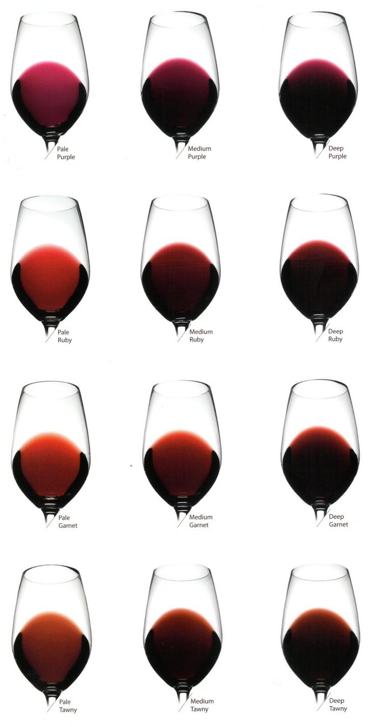 Vinos y Viñedos: Los Colores del Vino