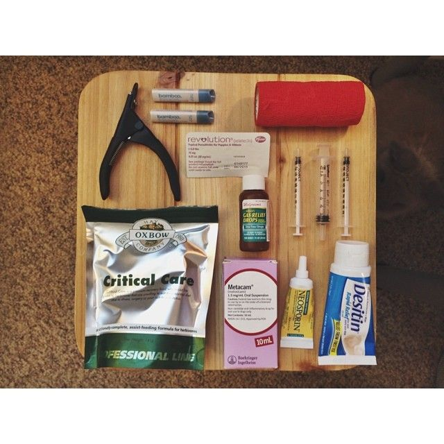 We just made a post on our website about bunny first aid kits. Having a first aid kit for your bunny is a great idea, and I recommend that y...