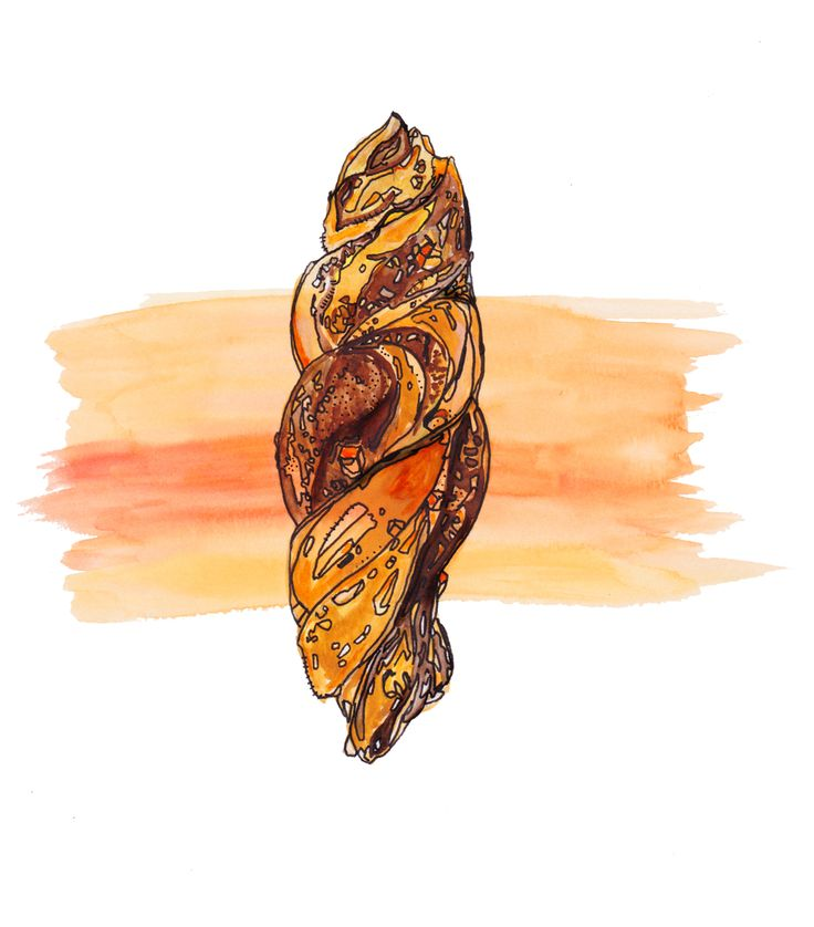 Chocolate orange swirl illustration