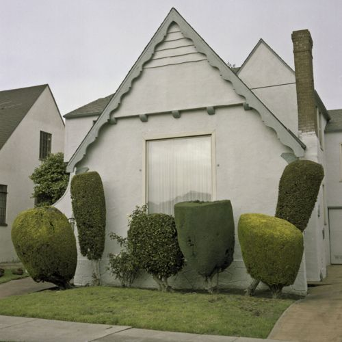 "I love these topiary ""hairdos"" - photo by Kurt Manley"