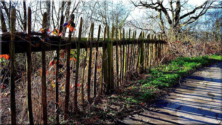 Műemlék jellegű kerítés használt faanyagból