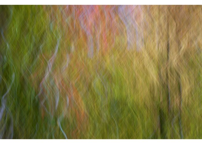 """PETER DAITCH """"Vermont 63"""" 2015 16"""" x 24"""" (40.5 x 61 cm) digital photo printed on archival pigment prints. unframed. edition of 10  $1,250.00"""