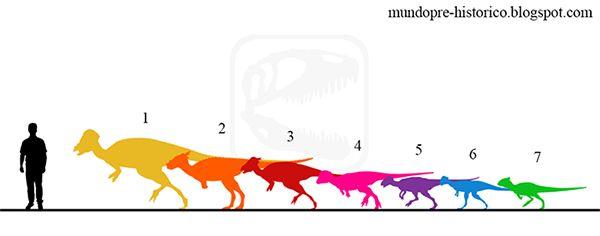 Mundo Pré-Histórico: Paquicefalossauros (Pachycephalosauria)