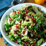 This salad of shredded Brussels sprouts with meyer lemon and pomegranate is a quintessential fall dish. It's a great choice for holiday potlucks!
