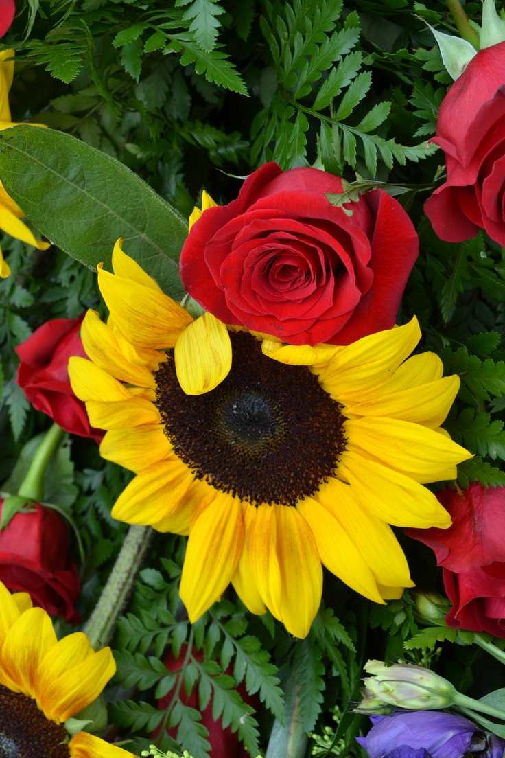 best Flowers made andor photographed by me images on Pinterest