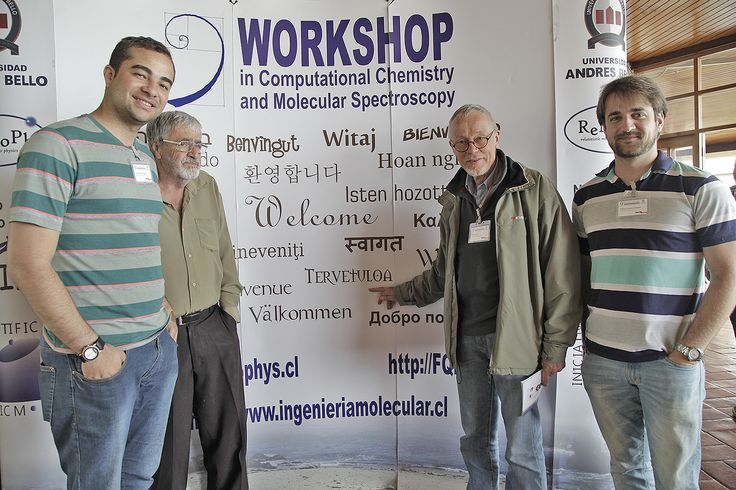 9th Workshop in Computational Chemistry and Molecular Spectroscopy - Punta de Tralca.