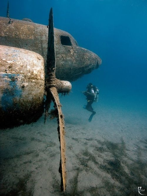 What a great site to see and airplane underwater