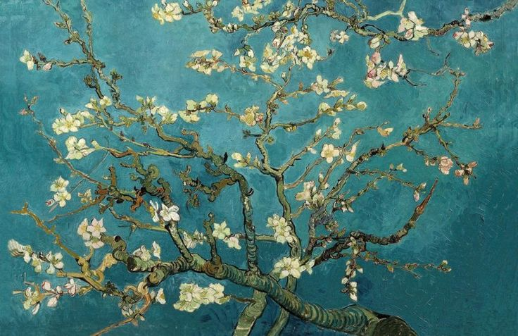 almond-branches-art-plain
