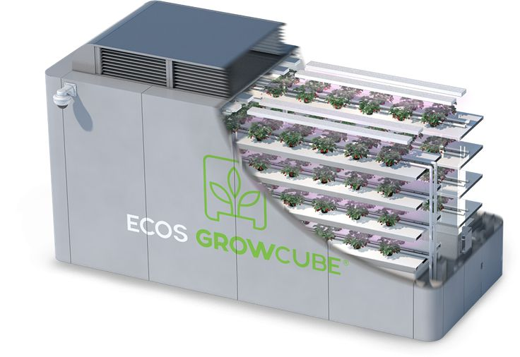 Ecos GrowCube™ is a turn-key, fully-automated hydroponic greenhouse that is Made in the USA and fabricated out of aircraft-grade aluminum. An Ecos GrowCube™ utilizes hydroponic growing techniques in order to maximize the amount of crop production possible in a given footprint and eliminates the need for soil, fossil fuels, pesticides and toxic chemicals.