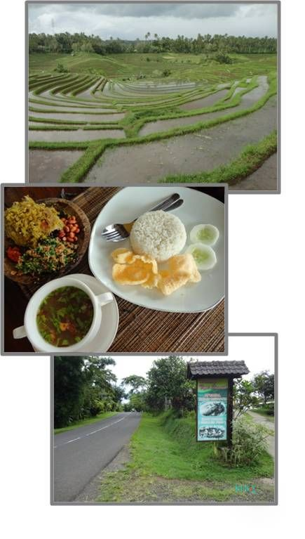 Look out over stunning rice terraces while enjoying the best 'Bebek Betutu', a typical Balinese Duck Feast in this road side eatery.