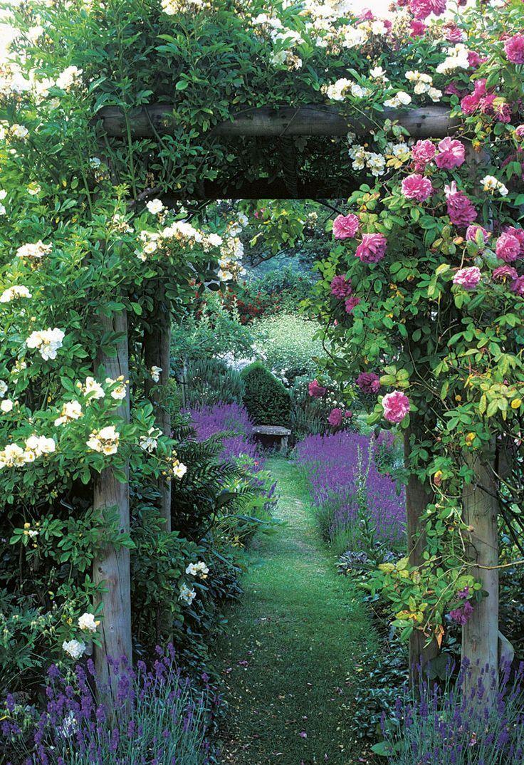 Secret Garden: Best 25+ Garden Arches Ideas On Pinterest