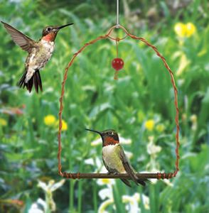 SEHHHUMS Hummingbird Swing Hummingbirds are territorial and will use this swing as a perch to watch over their food source. Simply place this swing near hummer feeders and enjoy watching them sit and swing. Red glass bead dangler attracts birds.