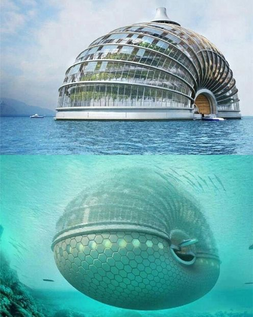 Ark Hotel In China Love To Stay There | Full Dose