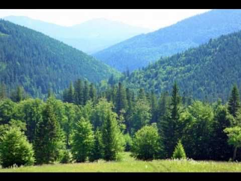 Erdő erdő erdő - magyar népdal - YouTube