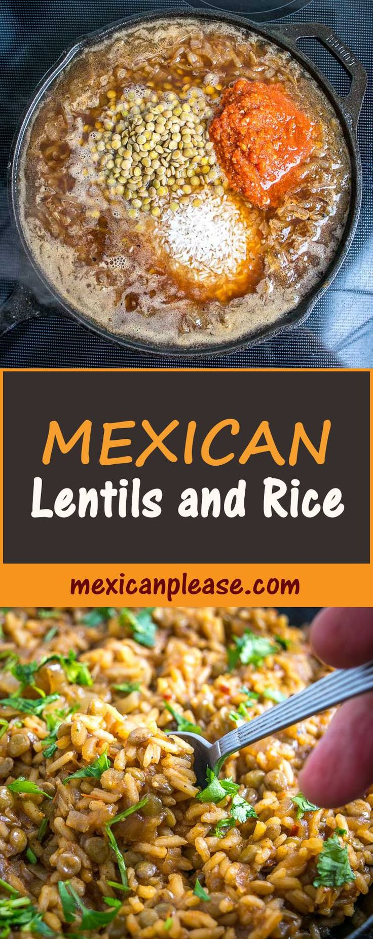 Here's an easy way to make a delicious Lentils and Rice dish.  You can go easy on the chipotle if you want a milder version.  We used some homemade veggie stock and it was delish!  #mexican #lentils #rice mexicanplease.com