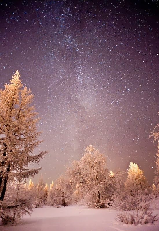 Polar Night... if you listen carefully, you might be able to hear sleighbells...