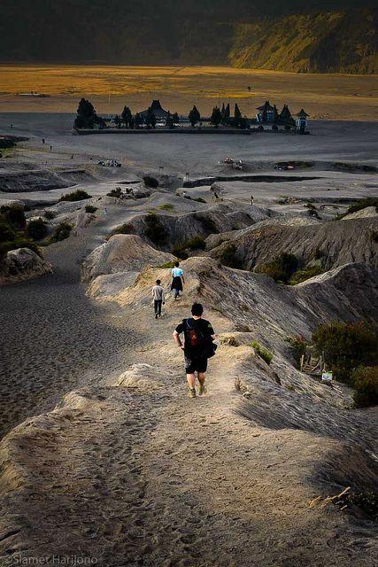 Mount Bromo, Tosari Pasuruan, East Java Indonesia.  sewa Hardtop dan Homestay, serta jasa antar jemput bandara mau? on 085235454589