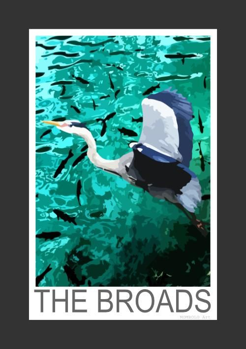 Grey Heron by a fish filled lake on the Norfolk Broads (Art Print)