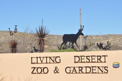 e807ec7b980b3a118546b74eb061328f - Living Desert Zoo And Gardens State Park New Mexico