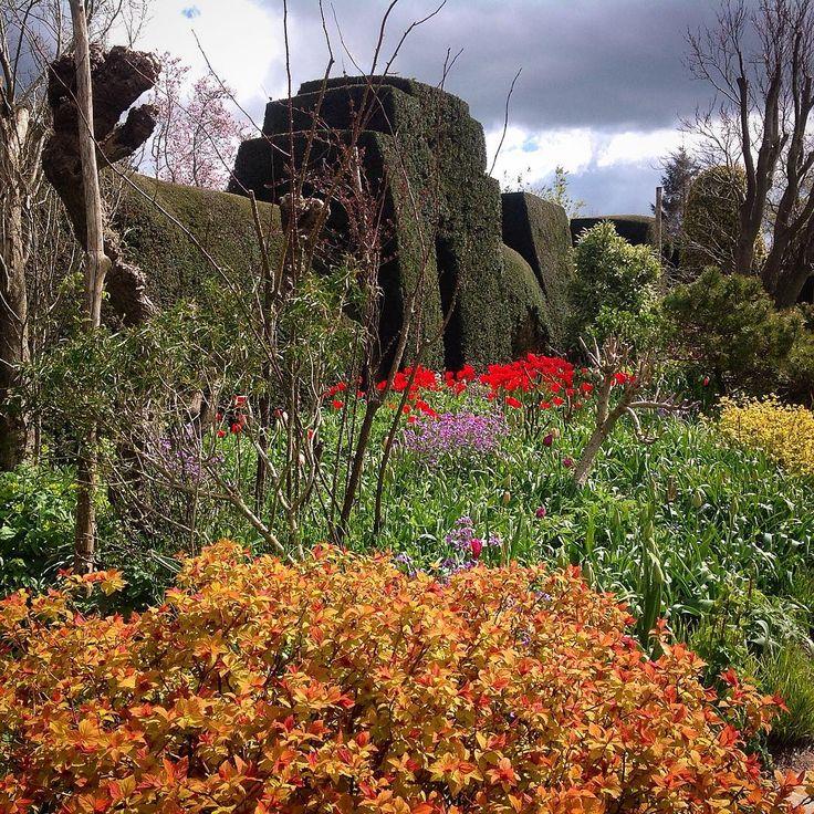 Mutfaktaki Teselli - Özlem Birsel Graves @mutfaktakiteselli @idefix_com @kitapyurducom @amazon @dr_dunyasi #kitap #garden #okumahalleri #england #edebiyat #fotoğraf #kitaplar #instakitap #plants #bahçe #antropoloji http://turkrazzi.com/ipost/1520525259300039430/?code=BUZ_arQlmsG