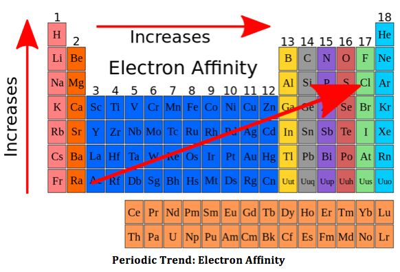 General Trend: Electron Affinity