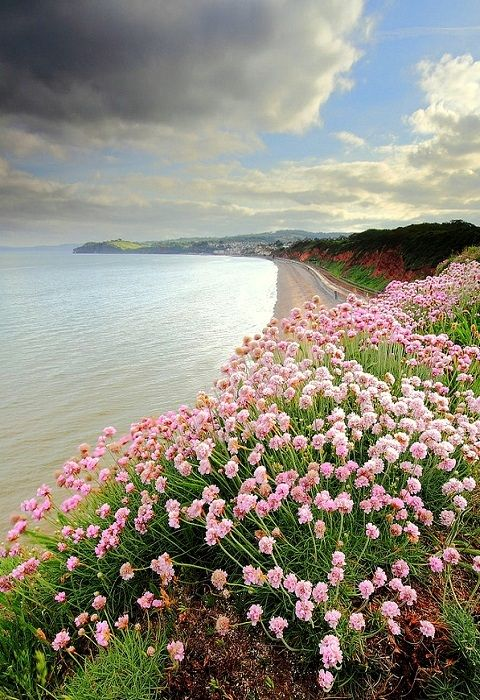 Devon, England (by James ~ Anderson on Flickr)