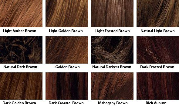 Brown Hair Color Charts