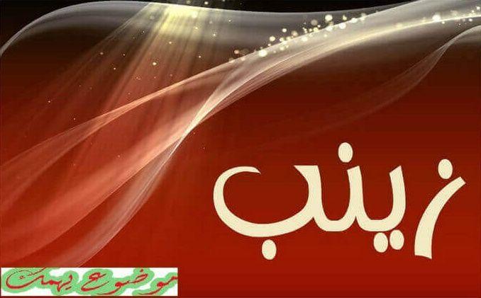 معنى اسم زينب في اللغة العربية اسماء بنات موضوع يهمك Neon Signs Neon Signs