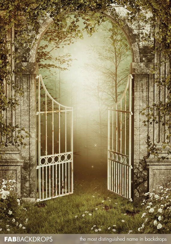 Enchanted forest gates backdrop fairy or princess photo for Princess fairy door