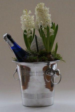 ...champagne koeler,  fles Prosecco  en    drie hyacinten Leuk cadeau voor een bruiloft enz.