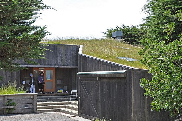 Living Roof House Entrance by jmurphy95437, via Flickr