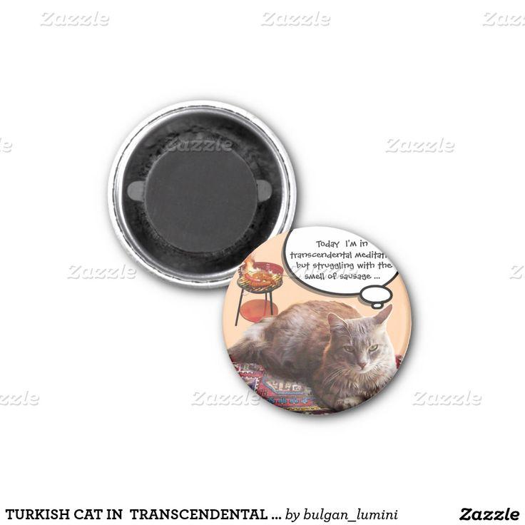 TURKISH CAT IN  TRANSCENDENTAL MEDITATION 2 INCH SQUARE MAGNET