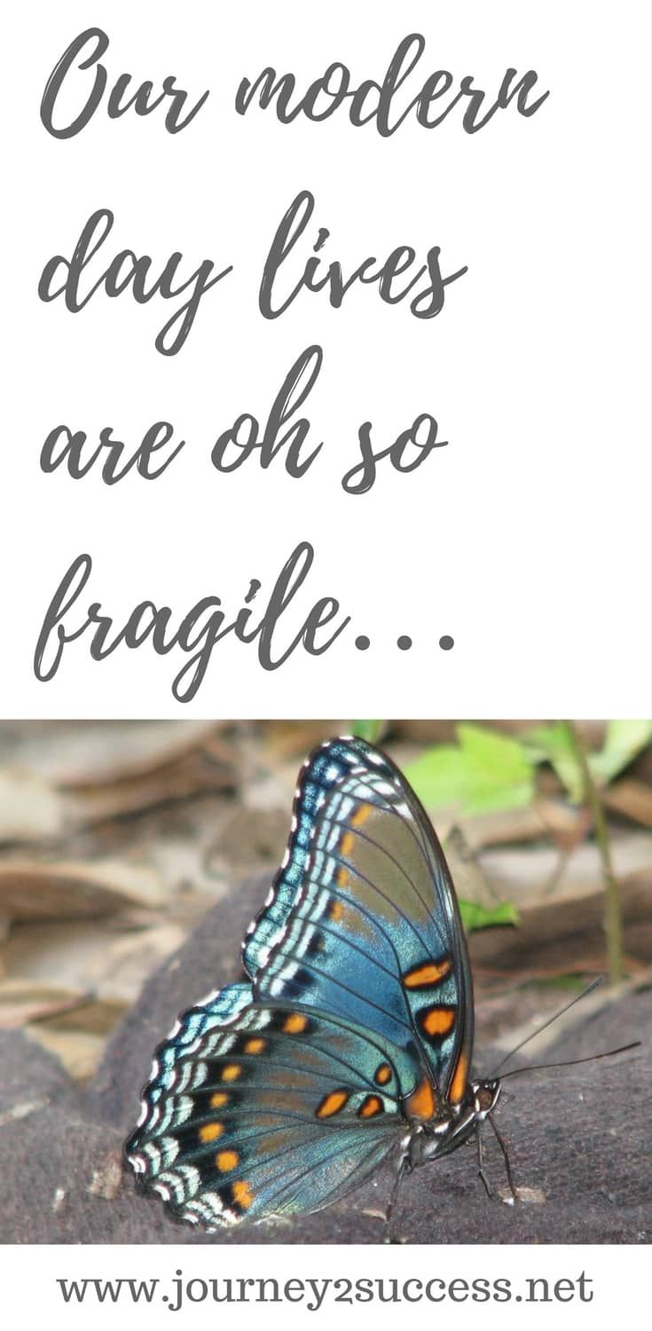 Our modern day lives are oh so fragile… - self improvement thoughts
