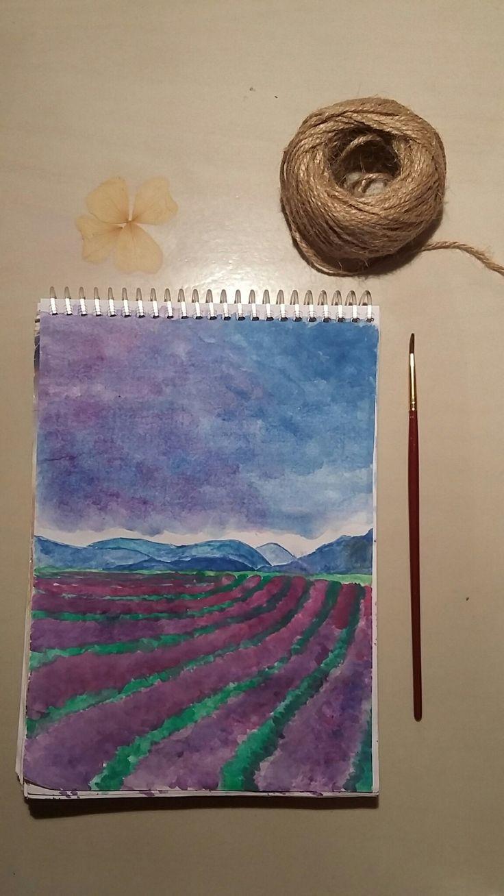 Lavender field🍃