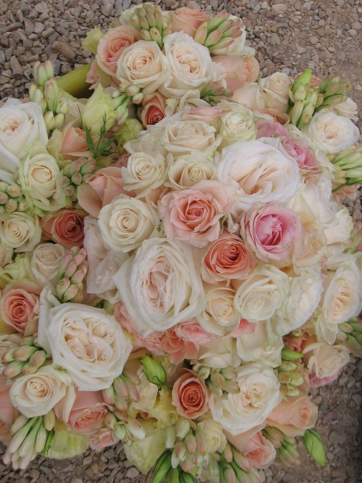 Leslee's bridal & bridesmaid's bouquets - imported scented roses, pastel cluster roses & tuberroses.