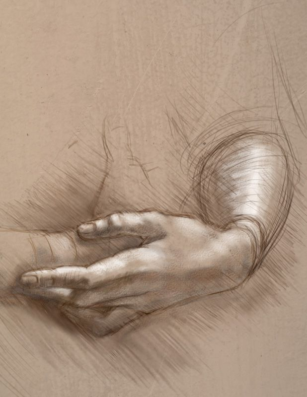 Today's drawing class: Drawing Techniques by The Old Masters | Da Vinci - hand study | Artists, who are most successful in silverpoint drawing are those with a deep concern for beauty of surface. So an artist such as Leonardo, is much more successful in silverpoint than an artist such as Michelangelo who is relatively heavy-handed in his drawing.