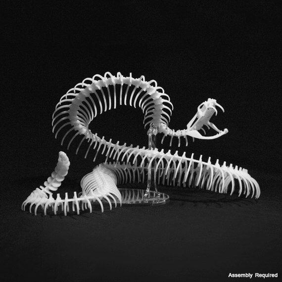 Rattlesnake Kit by Bonelab on Etsy https://www.etsy.com/listing/189414392/rattlesnake-kit