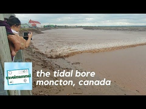 The Tidal Bore in Moncton, New Brunswick, Canada. - YouTube