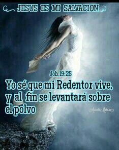 Job, 19:25 - Yo sé que mi Redentor vive, y al fin se levantará sobre el polvo